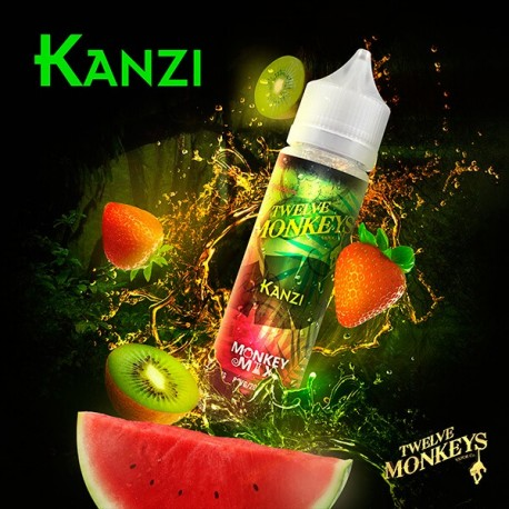 Kanzi - 12 Monkeys